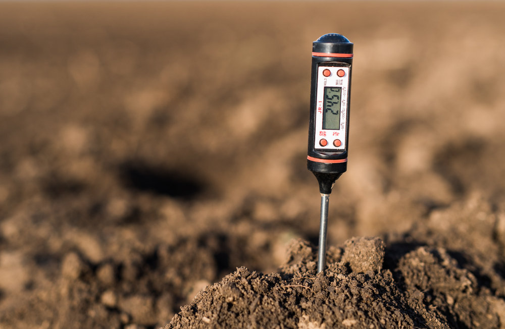 Measuring is knowledge: all about pH